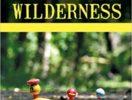 Ebenbach Into the Wilderness